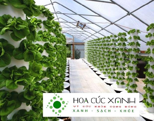 mô hình trồng rau khí canh trụ đứng
